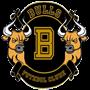 BULLS FC